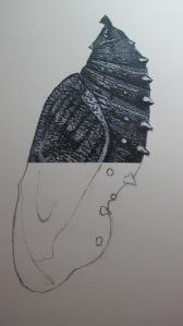 Angel's Nightie (work-in-progress)